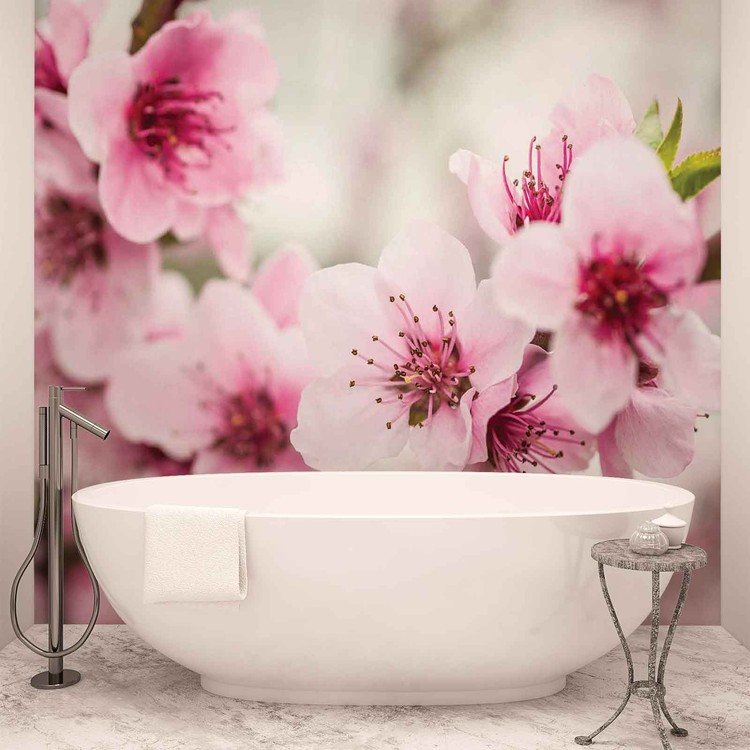 Kwitnące kwiaty wiśni Fototapeta