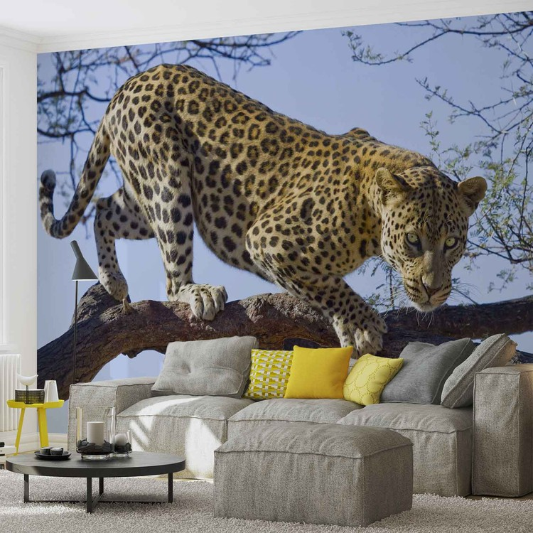 Leopard na drzewie Fototapeta