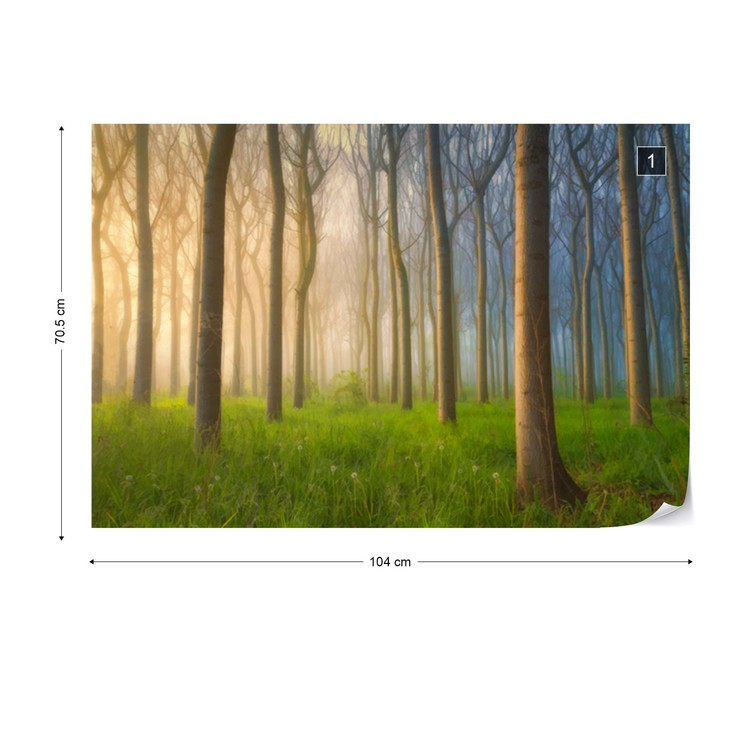 Fototapeta Misty Morning