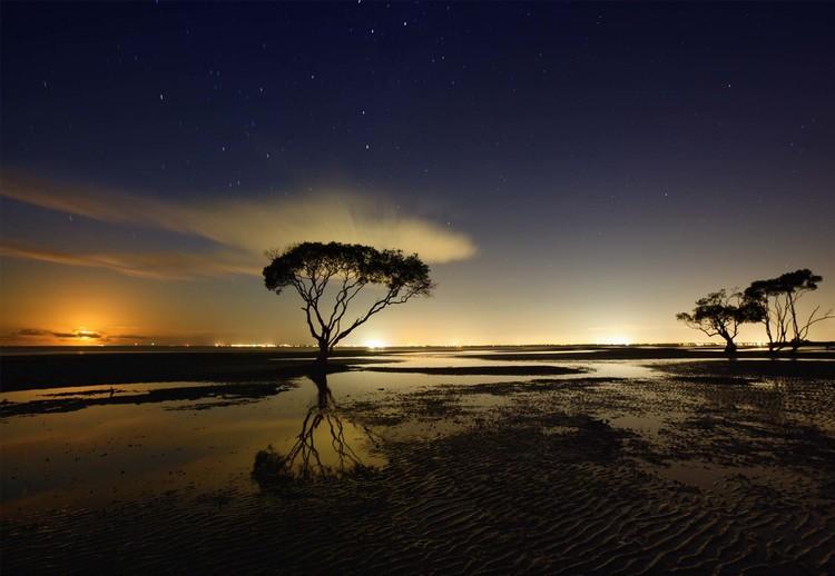 Fototapeta Moonrise