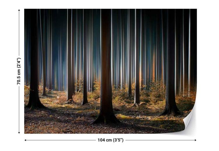 Fototapeta  Mystic Wood
