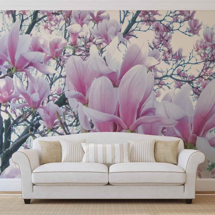 Fototapeta Příroda - Květiny Magnólie