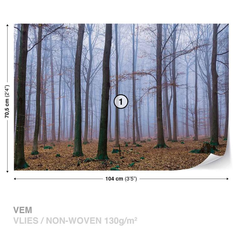 Fototapeta  Příroda - Les