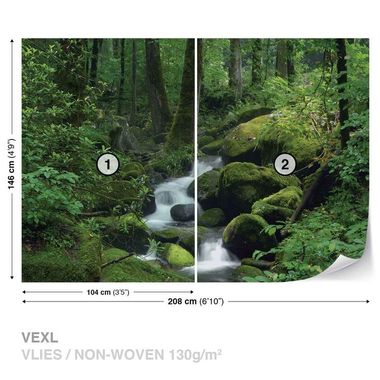 Fototapeta Příroda - Vodopád, Les, Skály