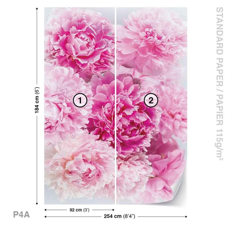 Różowe goździki Fototapeta