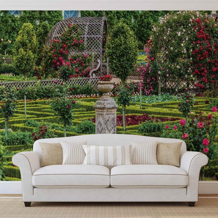 Fototapeta Růžová zahrada