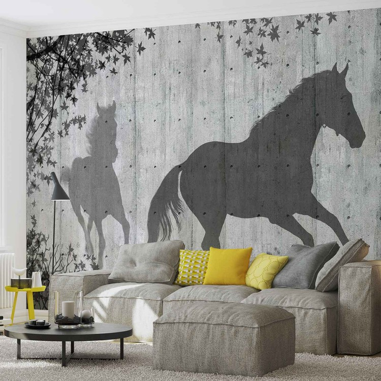 Fototapeta  Stín koně na stěně