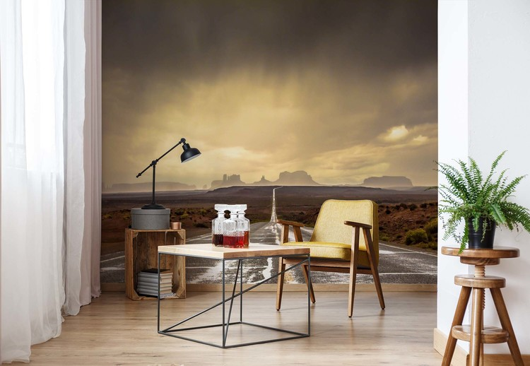 Fototapeta  Strom In Monument Valley