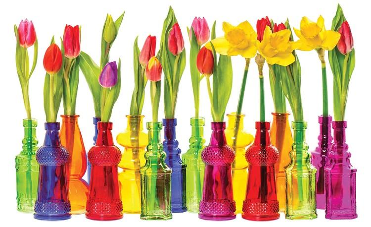 Fototapeta  Tulipány ve flaškách