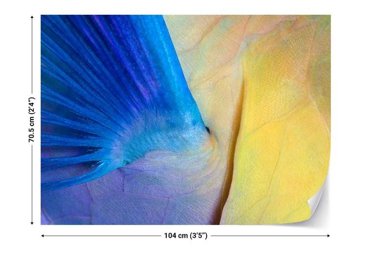 Fototapeta  Wings
