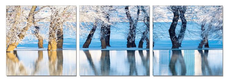 Frozen Trees Schilderij