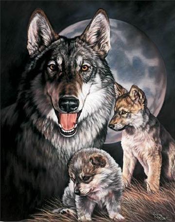 GRAHAM - Wolf Experience Metalen Wandplaat