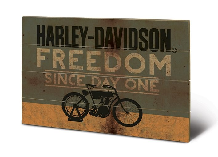 bild auf holz harley davidson freedom bei europosters. Black Bedroom Furniture Sets. Home Design Ideas