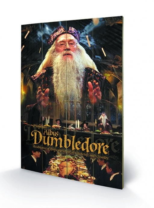 Harry Potter - Dumbledore plakát fatáblán