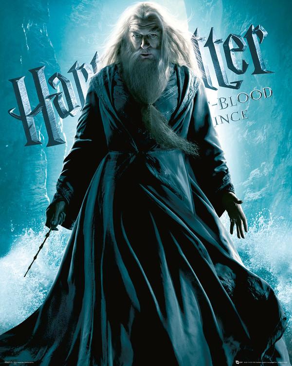 Harry Potter és a Félvér Herceg - Albus Dumbledore Standing Festmény reprodukció