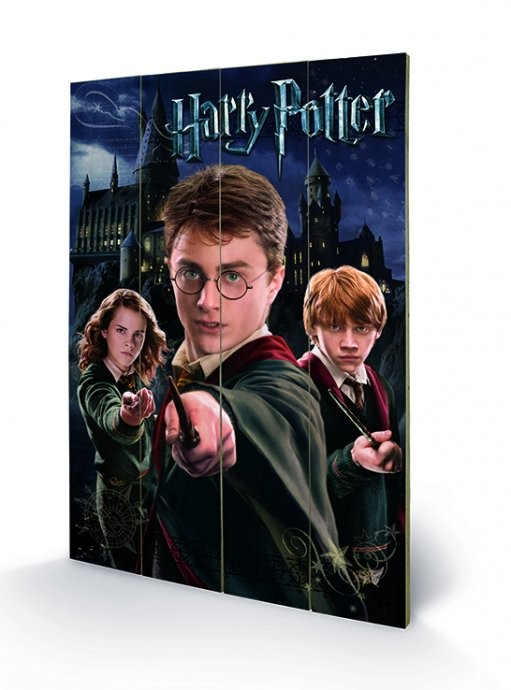 Bild auf Holz Harry Potter – Harry, Ron, Hermione