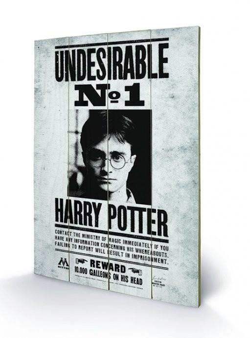 Obraz na dreve Harry Potter - Undesirable No1