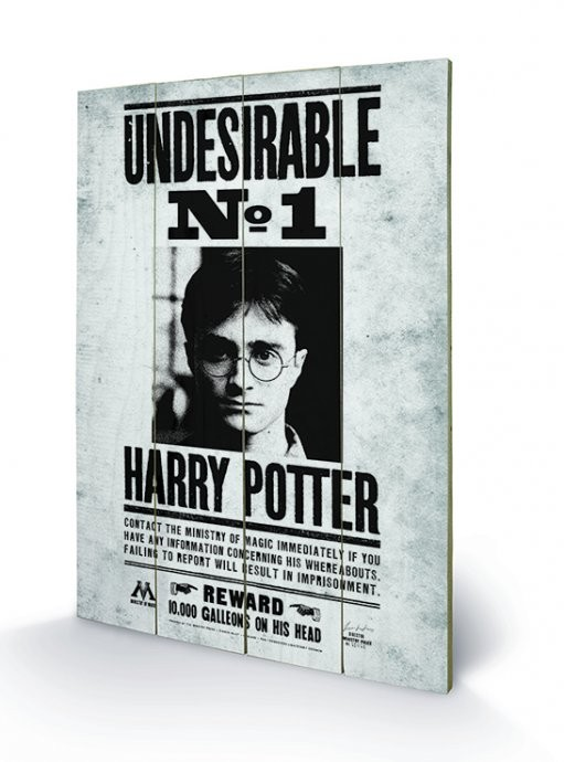 Målning på trä Harry Potter - Undesirable No1