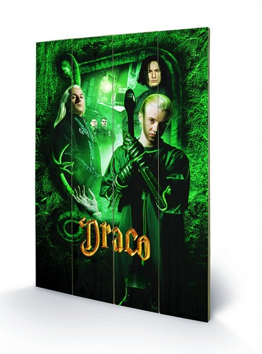 Harry Potter - Draco kunst op hout