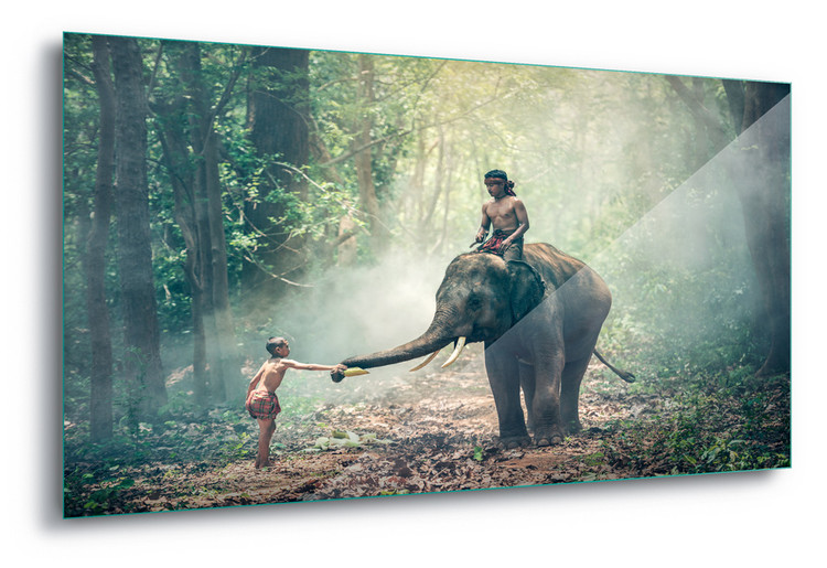 Cuadro en vidrio  Jungle Friends