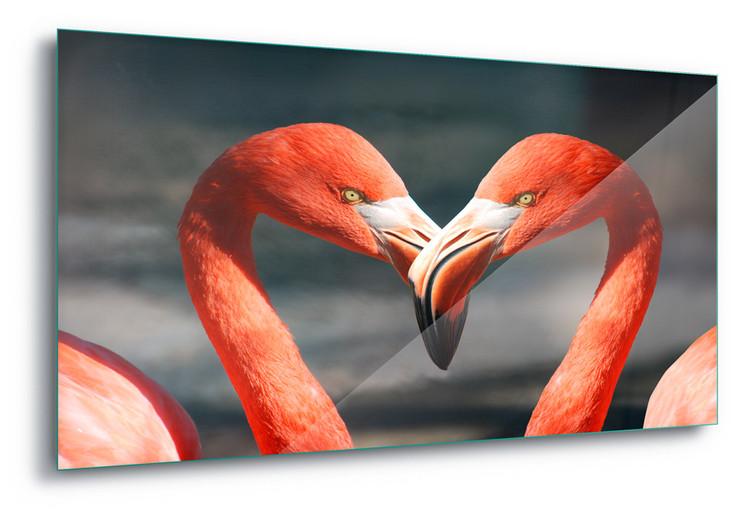 Cuadro en vidrio  Love Flamingoes