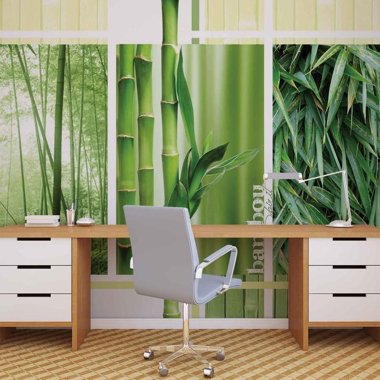 Fototapeta Příroda, Les, Bambusy