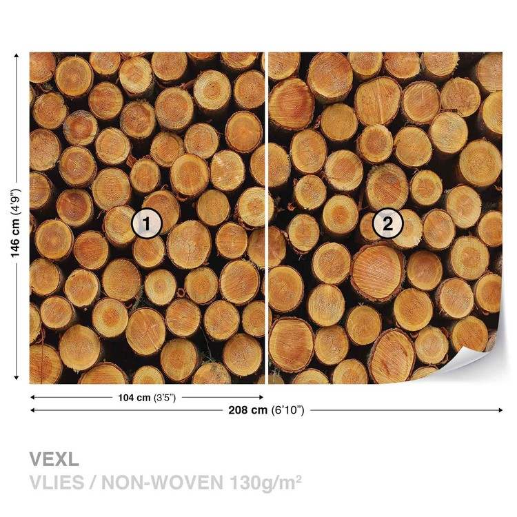 Fototapeta Struktura dřeva, letokruhy