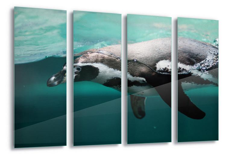 Skleněný Obraz  Pingu