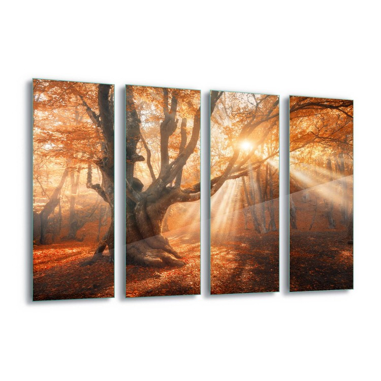 Autumn Magic Staklena slika