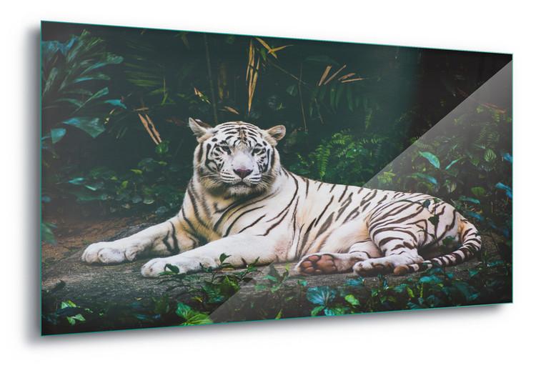 White Tiger Staklena slika