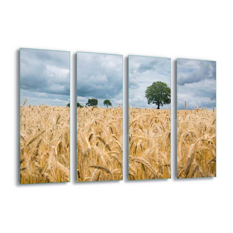 Tablouri pe sticla  Harvest Time