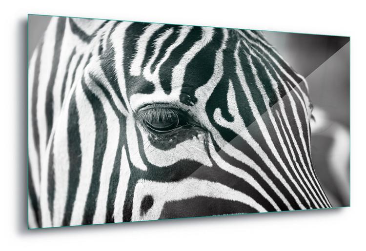 Üvegkép Stripes