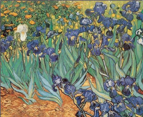Irises, 1889 Festmény reprodukció