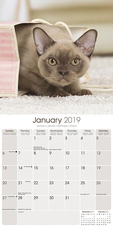Kalendář 2019  Burmese