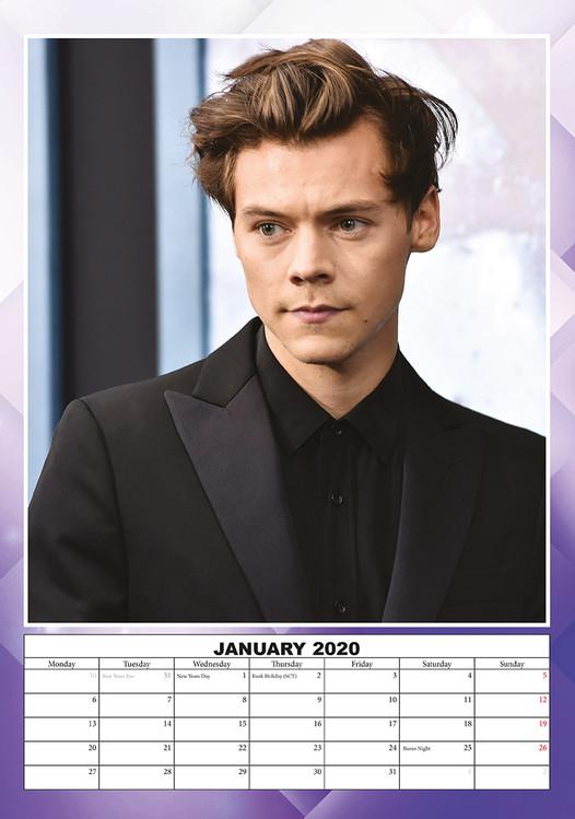 Kalendář 2020  Harry Styles
