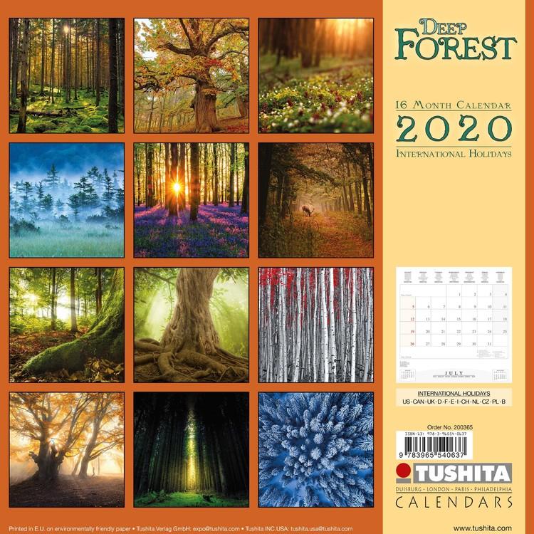 Kalendář 2020 Les
