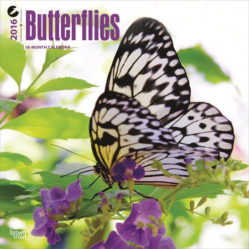 Kalendár 2017 Motýle
