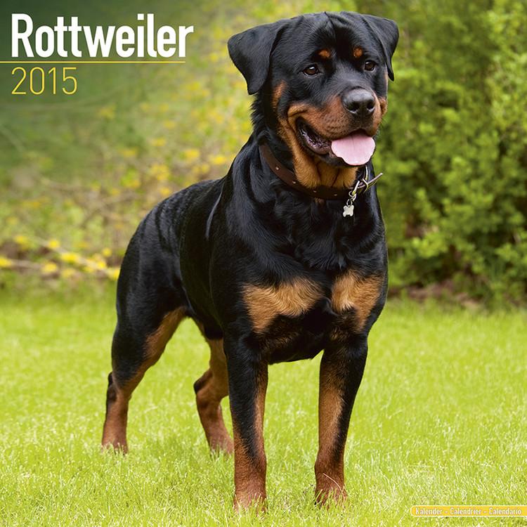 Kalendář 2017 Rotvajler