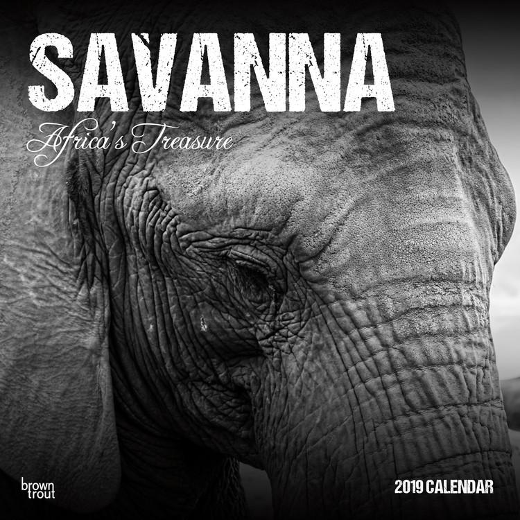 Kalendář 2019  Savanna - Africas Treasure