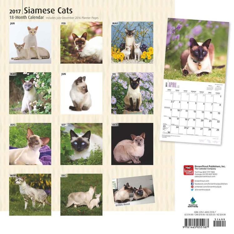 Kalendář 2017 Siamské kočky