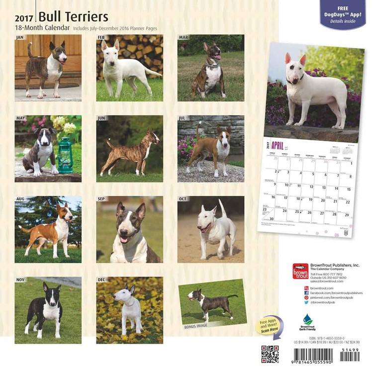 Bulterier Kalendarz 2018