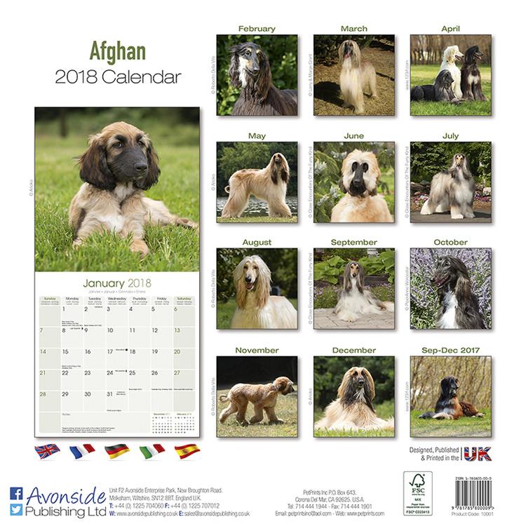 Afghan Kalender 2019
