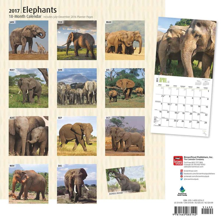 Olifant Kalender 2018