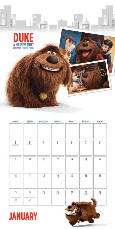 Kalender 2018  Pets