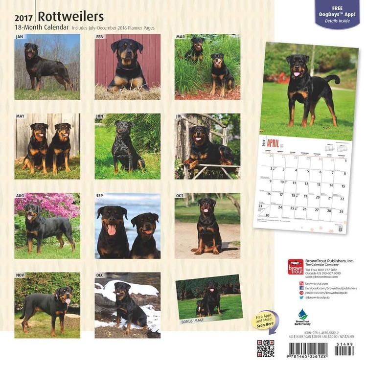 Kalender 2019  Rottweilers