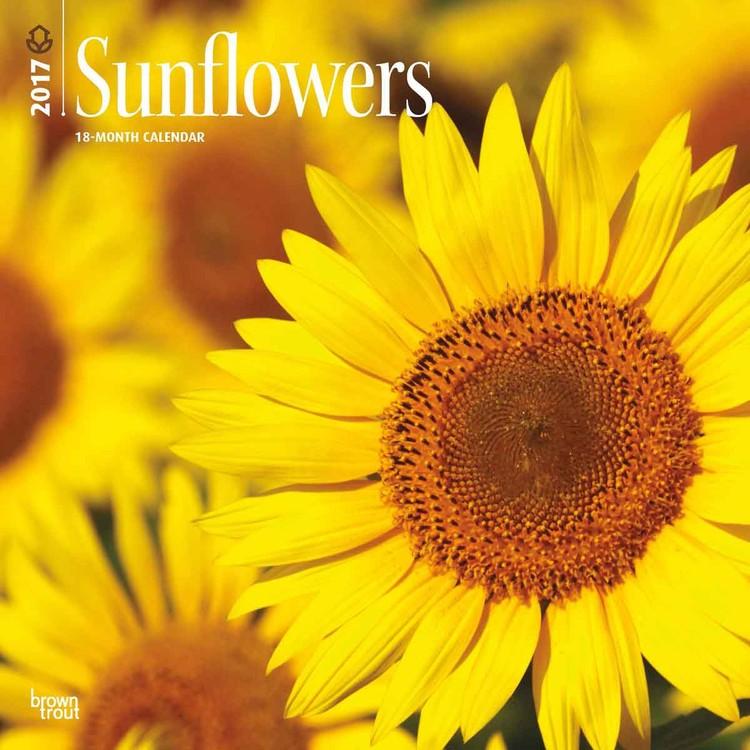 Kalender 2017 Sonnenblumen