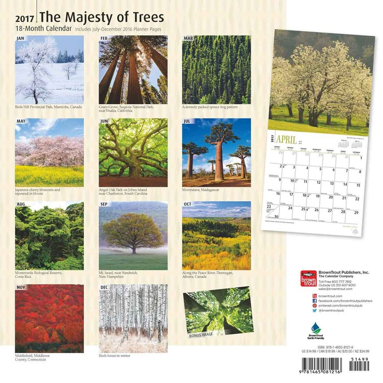 The Majesty of Trees Kalender 2018