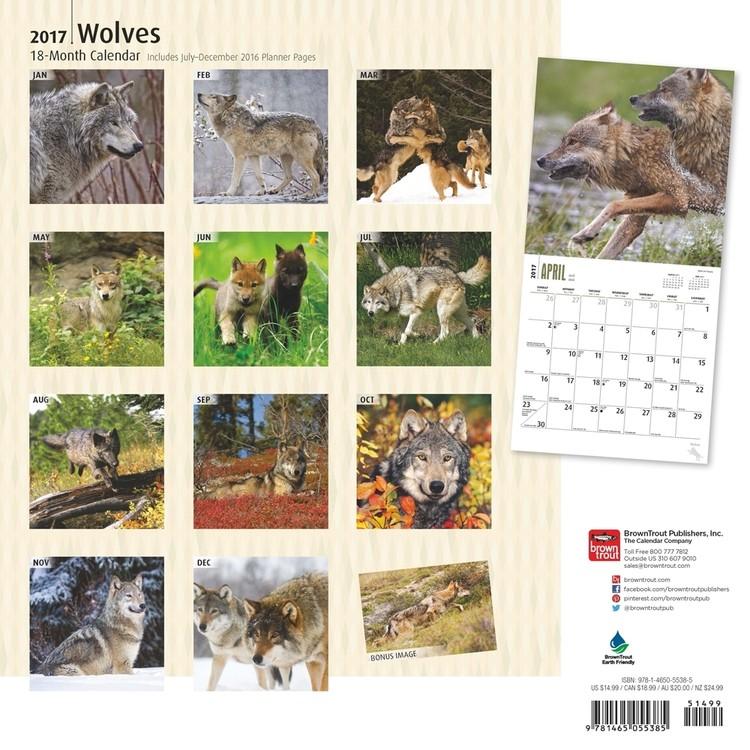 Kalender 2019  Vargar