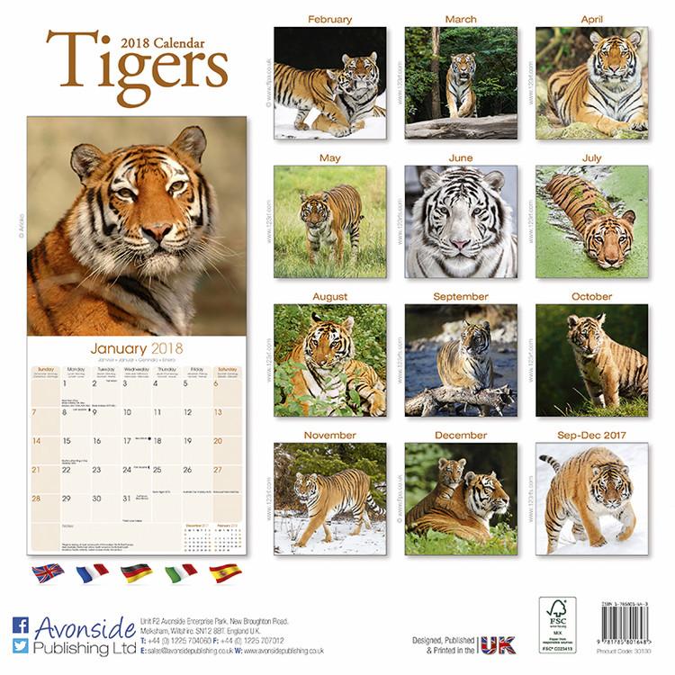 Tigers Kalender 2019
