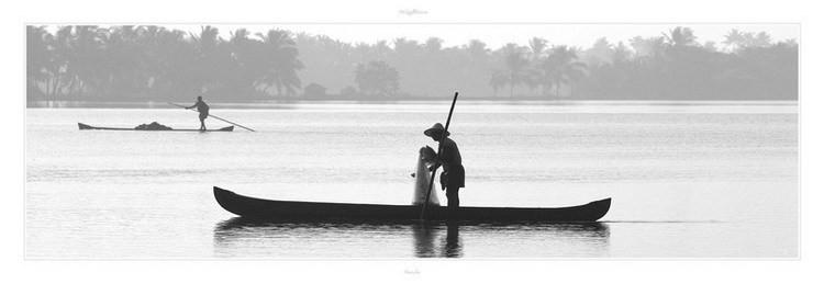 Kerala - Inde du sud Festmény reprodukció